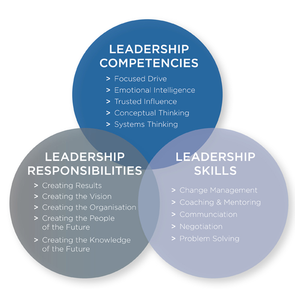 leadership consulting